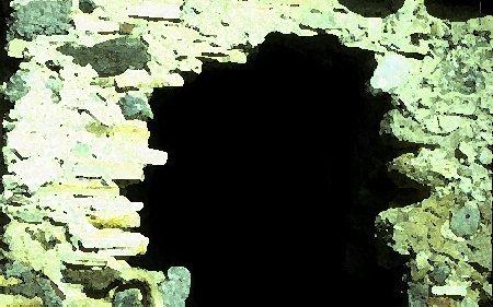 Conca - immagine subacquea
