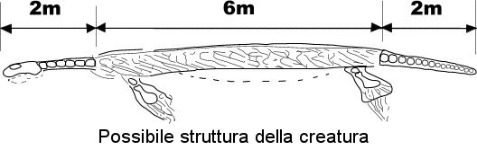plesiosauro